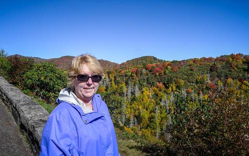 Blue Ridge Parkway in Autumn-47