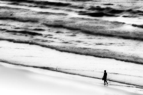 ocean morning sea people blackandwhite beach water monochrome silhouette sunrise outdoor serene