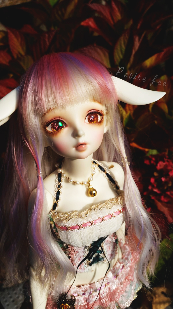 NEW DOLL: LDOLL ! ❤ Mes petites bouilles ~ NEWP.4 - Page 2 22209103858_6a03d05f7d_o