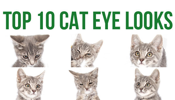 top-10-cat-eye-looks