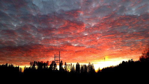 autumn trees sunset fall silhouette clouds forest finland evening october phone powerline imatra skiesabove sakarip
