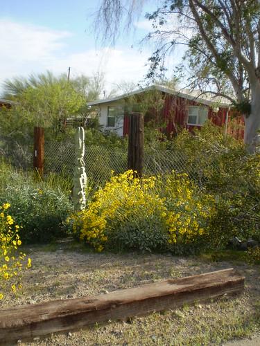 phoenix Haus & Garten