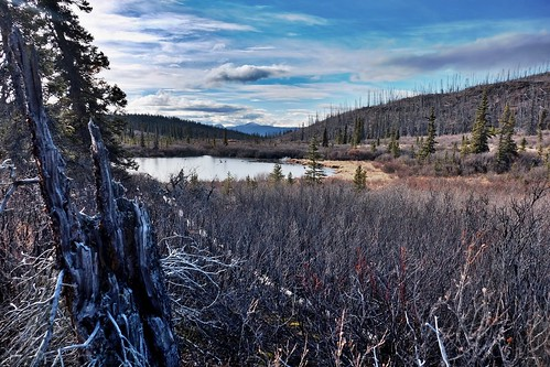 Pond w. Miner's Range in Distance