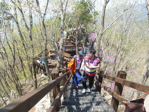 Co-Daegu-Parc Palgongsan-Montagne (5)