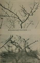 """Image from page 96 of """"dong bei shi yong guo shu zai pei"""" (1950.9)"""
