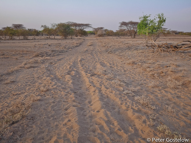 Unrideable track through Turkana