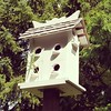 Birdhouse gone to seed. #newtonfreelibrary #newtonma