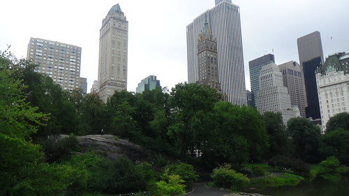 New York Central Park Aug 15 (7)