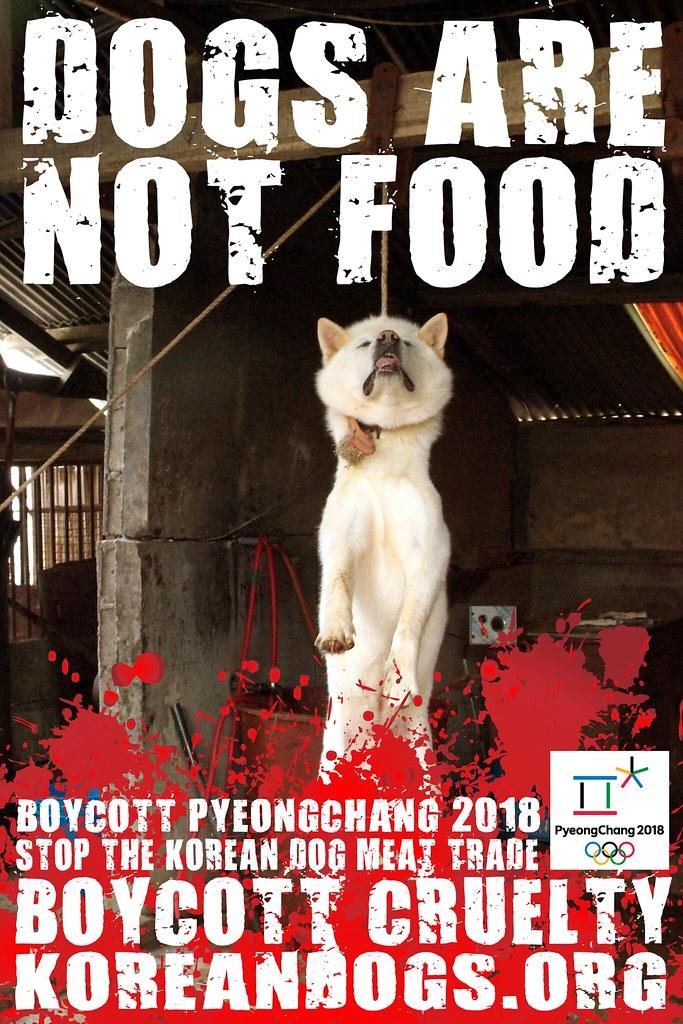 Boycott_Pyeongchang_1440x2160_s
