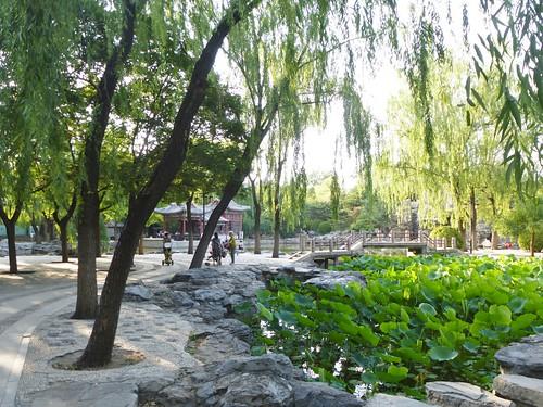 CH-Beijing-Parc Ritan (8)