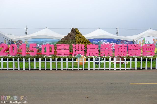 2015台中新社花海42