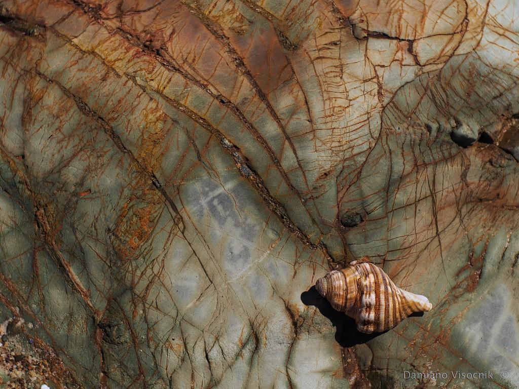 Texture on sea rocks_c