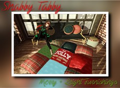 Merry + Bright Set