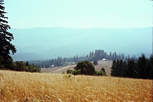 Kerrydale Ranch-4