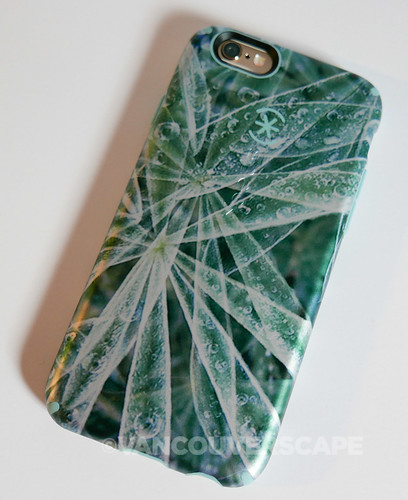 Speck CandyShell Inked cases-9