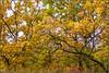 Warburg Nature Reserve