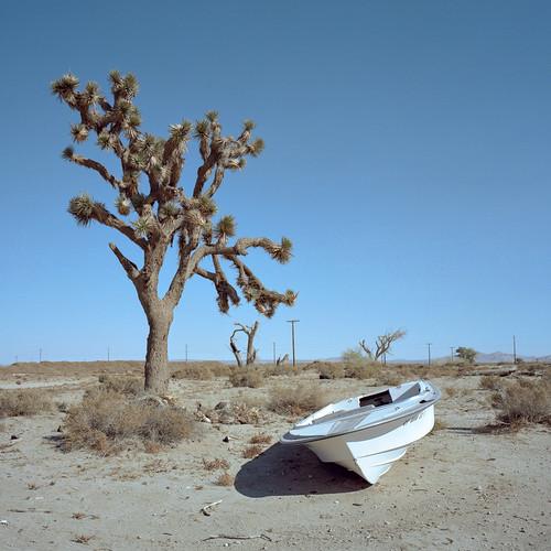 eyetwistkevinballuff abandoned speedboat boat joshuatree antelopevalley mojavedesert mamiya 6mf 50mm kodak portra 160 eyetwist mamiya6mf mamiya50mmf4l kodakportra160 ishootfilm analog analogue film emulsion mamiya6 square 6x6 mediumformat 120 primes filmexif iconla epsonv750pro filmtagger ishootkodak mojave desert av antelope valley highdesert california arid dry lonely tumbleweed clouds bluesky dirt flat landscape barren color faded forgotten open wasteland roadside america american typologies americantypologies derelict ruin lake los angeles view