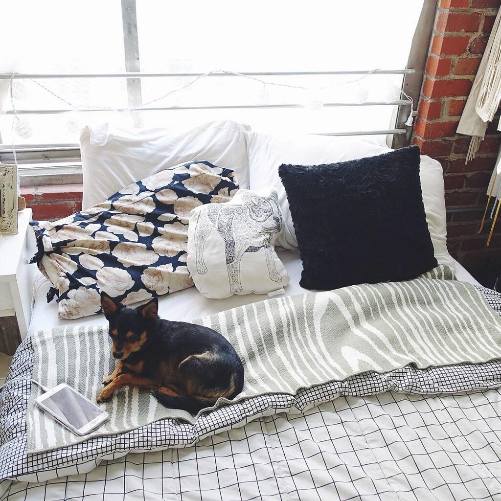Min Pin, vintage comforter, bed, loft, DTLA
