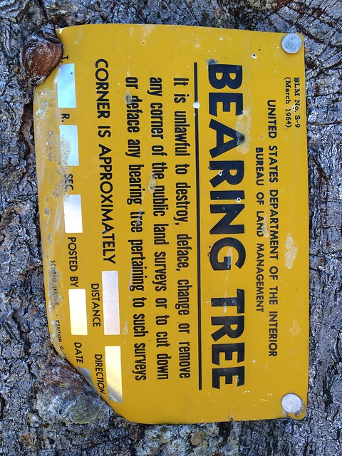Bearing tree placard