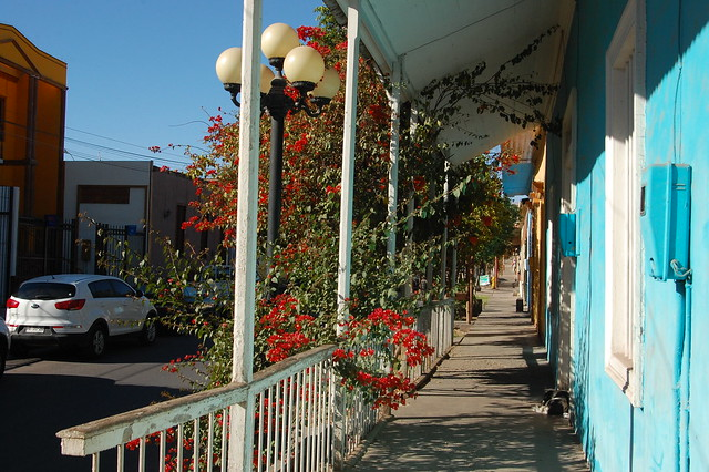 Main Street of Pica, Tarapacá, Chile