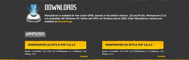 download-section-of-wamp-server-iplust