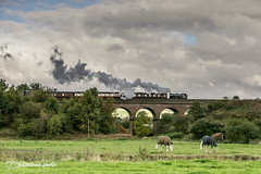 Steam on the Seven Arches
