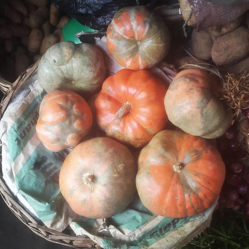Current status - markets. My pumpkin haul... #pumpkin #inseason #autumnvegetables #fallvegetables #orange #markets