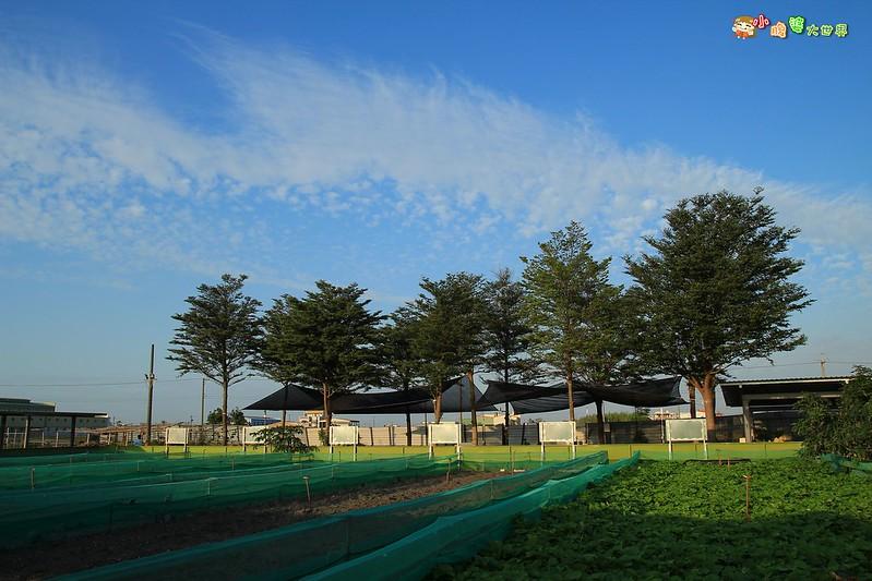 小品蝸牛觀光農場一022