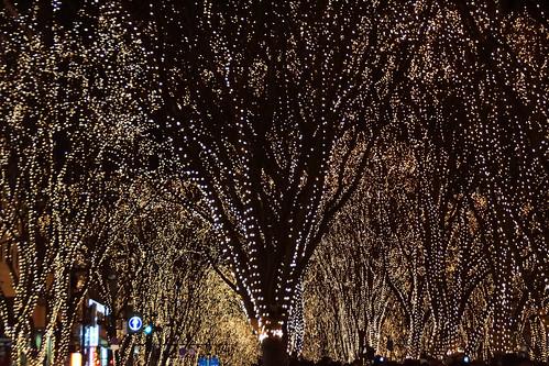 winter japan sendai miyagiken sendaishi japanurlaub20152016