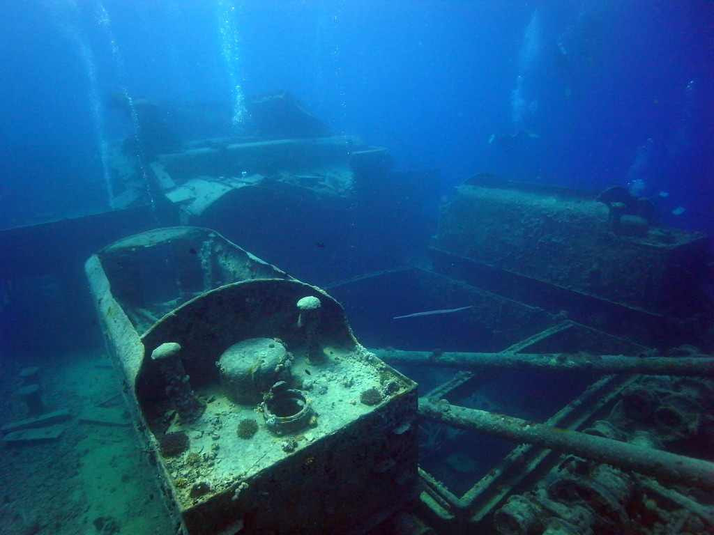 scuba diving essay