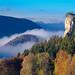 Ankenballen_Autumn_fog
