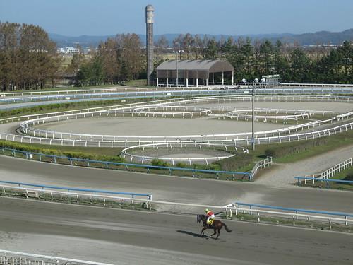 金沢競馬場の内馬場