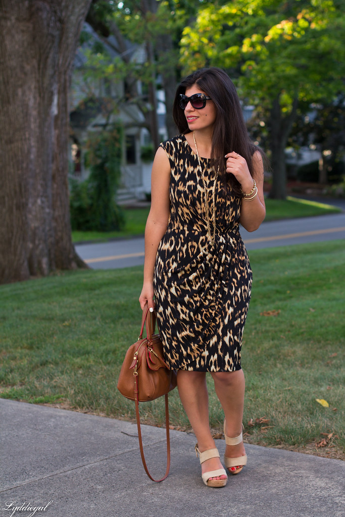 leopard dress, brown bag, platform sandals-1.jpg