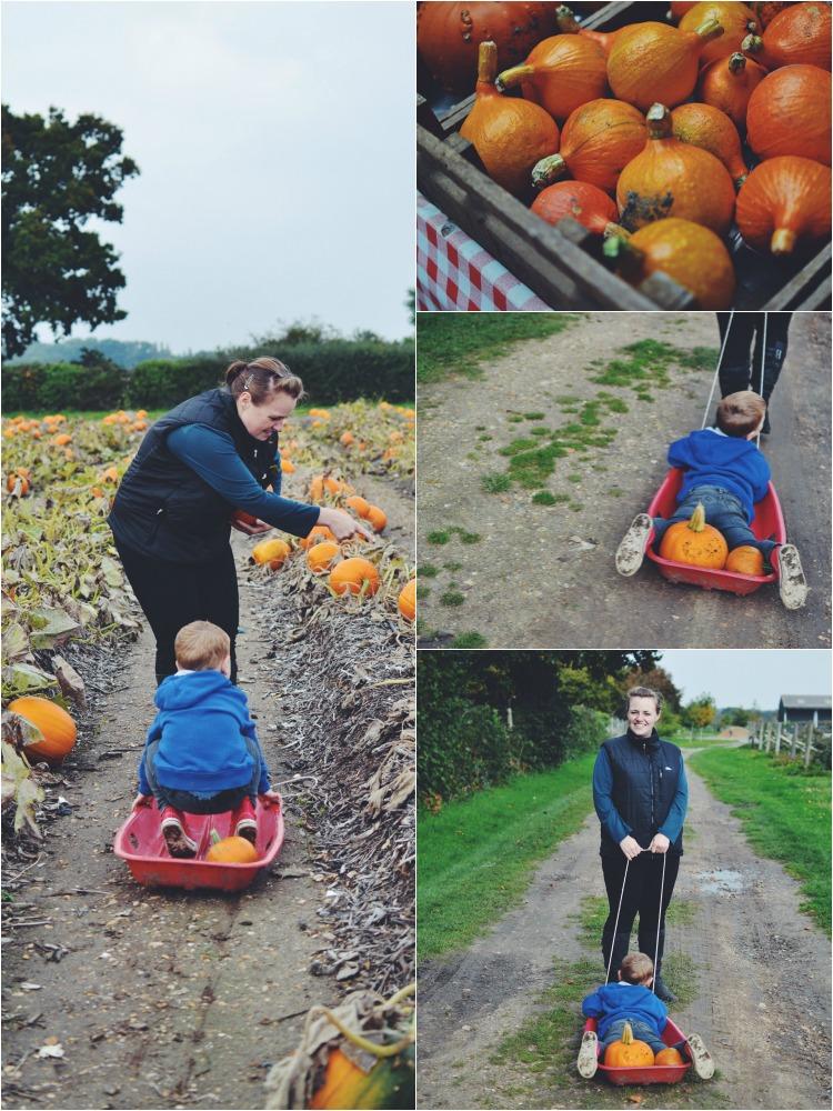 pumpkin mix