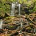Camprock Branch Falls, Camprock Branch, Coweeta Hydrologic Laboratory, Nantahala National Forest, Macon County, North Carolina 2 by Alan Cressler