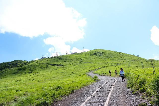 2014-07-26_00673_霧ヶ峰.jpg