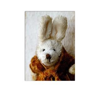 Easy Bunny A23