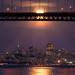 """Moon Catcher""- San Francisco, CA by Nicholas Steinberg photography"