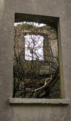 Fort Charles window opens onto a tree in Kinsale, Ireland