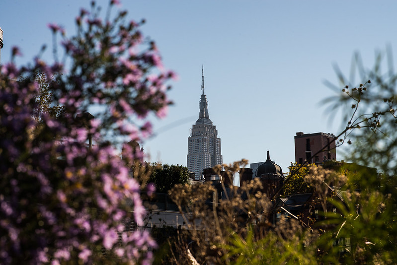 From High Line