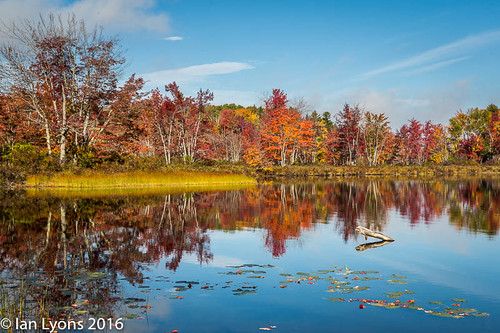sibleypond usa canaan concepts northamerica reflections fall maine fallcolours