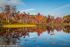 Fall Colours - Sibley Pond, Maine