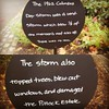 Signs about the Columbus Day Storm of 1962 at Pittock Mansion. #columbusdaystorm #pittockmansion