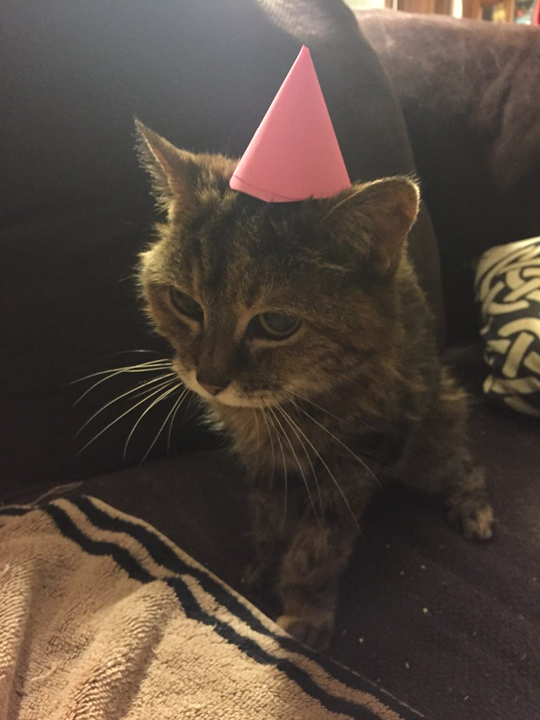 Latte on her 21st birthday.
