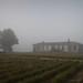 fog dweller by History Rambler