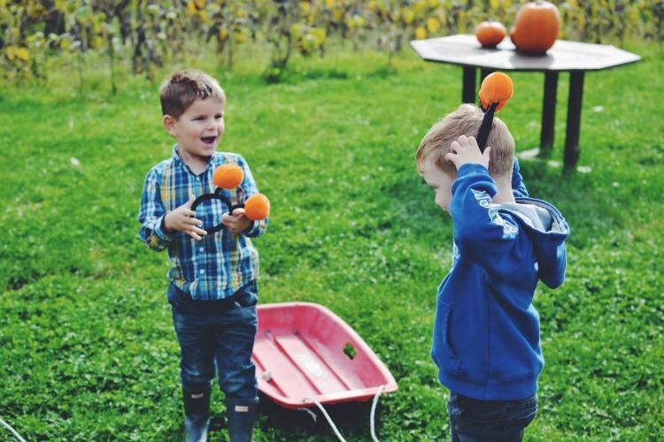 pumpkin bobbles