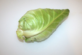 05 - Zutat Spitzkohl / Ingredient pointed cabbage