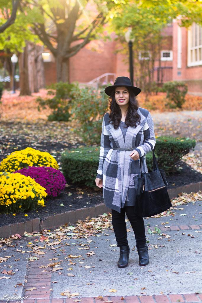 grey plaid coatagain, black pants, wool hat-1.jpg