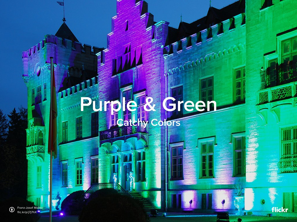 Catchy Colors: Purple & Green