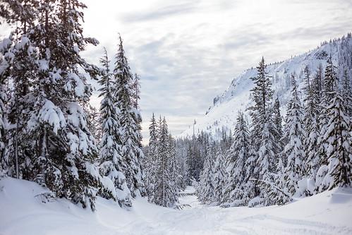 Ray Benson Snow Park-7964